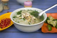 Vietnamese chicken noodle soup called pho, with green onion, bean sprouts and chili.  Royalty Free Stock Photos