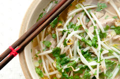 Vietnamese chicken pho soup Stock Image