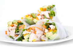 Vietnamese chicken rice paper spring rolls Stock Photography