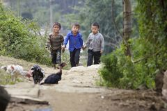 Vietnamese Children. Sapa, Vietnam - November 21: Three unidentified Vietnamese children in hills of Sapa, Vietnam on November 21, 2010 Stock Images