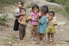 Vietnamese Children Playing. SAPA, VIETNAM- NOVEMBER 21: Six unidentified Vietnamese children play and eat in Sapa, Vietnam on November 21, 2010 stock images