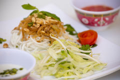 Vietnamese Cuisine - Rice Vermicelli with Shredded Pork Royalty Free Stock Photography