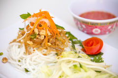 Vietnamese Cuisine - Rice Vermicelli with Shredded Pork Royalty Free Stock Image