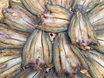 The Vietnamese cuisine: seafood - dried fish. Vietnamese cuisine: seafood - dried fish stock images