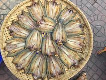 The Vietnamese cuisine: seafood - dried fish. Vietnamese cuisine: seafood - dried fish royalty free stock photo