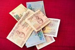 Vietnamese Dong Lizenzfreies Stockfoto