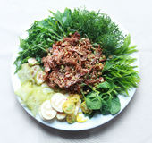 Vietnamese dried buffalo shredded meat with herbs and vegetables Stock Image