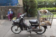 Vietnamese eat dogs Stock Photo