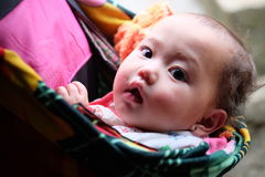 Vietnamese ethnic H'Mong baby on mother's back. Royalty Free Stock Photos