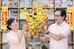 """Vietnamese family celebrate lunar new year. And a hanging with the meaning """"Spring came with happiness and safety"""", `Prosperity and wealthiness in the new Stock Photography"""