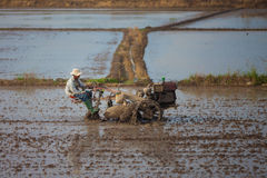 Vietnamese farme berijdt een tractor op 26 van December 2013 Royalty-vrije Stock Foto