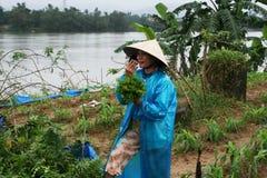 Vietnamese farmer Royalty Free Stock Photography