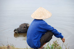 Vietnamese farmer with water buffalo Royalty Free Stock Photos