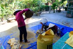 Vietnamese farmer working in font of their home royalty free stock photo