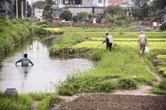 Vietnamese Fishermen at work Stock Images
