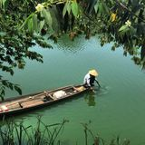 Vietnamese fishing. From boat in green lagoon in hue Vietnam Royalty Free Stock Image