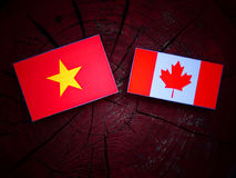 Vietnamese flag with Canadian flag on a tree stump isolated Stock Photos