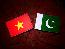 Vietnamese flag with Pakistan flag on a tree stump isolated Stock Photos