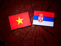 Vietnamese flag with Serbian flag on a tree stump isolated Stock Images