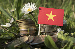 Vietnamese flag with stack of money coins with grass Royalty Free Stock Photos