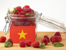 Vietnamese flag on a wooden panel with raspberries isolated on a Royalty Free Stock Image