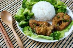 Vietnamese food, ca kho to, fish, sauce, caramel fish Royalty Free Stock Images