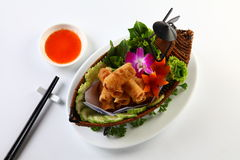 Vietnamese fried spring rolls on bamboo tray with sliced cucumbe Stock Photos