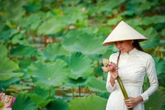 Vietnamese girl holding lotus flower royalty free stock photography