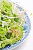 Vietnamese herbs Stock Photo