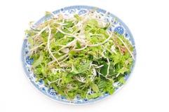 Vietnamese herbs Stock Photography