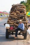 Vietnamese houthakker royalty-vrije stock fotografie
