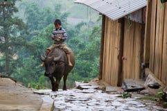 Vietnamese jongen die een buffel berijdt Stock Foto's