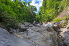 Vietnamese jungle. Sone formations in jungle of Vietnam Stock Photography