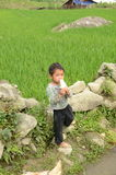 Vietnamese kid Royalty Free Stock Image