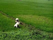Vietnamese landbouwers royalty-vrije stock afbeelding