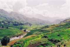 Vietnamese Landscape. Valley and mountains around sapa royalty free stock photo