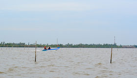 Vietnamese man sails a boat over the Mekong river Royalty Free Stock Photos