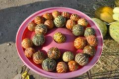 Vietnamese meloen Royalty-vrije Stock Afbeelding