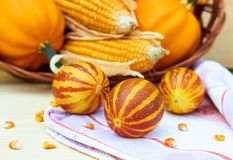 Vietnamese melons laying on linen fabric in front of basket with autumn pumpkins and corn stock photography