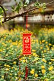 Vietnamese New Year decoration on a blurred background of yellow flowers. Hue, Vietnam Royalty Free Stock Images