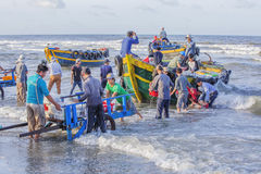 Vietnamese people working on the beach Royalty Free Stock Images