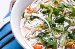 Vietnamese pho chicken soup Royalty Free Stock Images