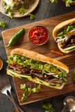 Vietnamese Pork Banh Mi Sandwich Royalty Free Stock Images