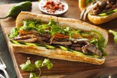 Vietnamese Pork Banh Mi Sandwich Royalty Free Stock Images