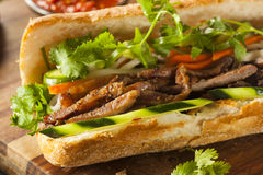 Vietnamese Pork Banh Mi Sandwich Royalty Free Stock Photography