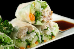 Vietnamese Rice Paper Rolls 4. Delicious and healthy Vietnamese rice paper rolls with chicken and vegetables Royalty Free Stock Photo