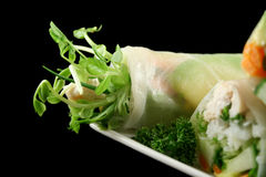 Vietnamese Rice Paper Rolls Royalty Free Stock Images