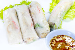 Vietnamese rice paper rolls with prawns Royalty Free Stock Photography