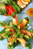 Vietnamese rolls with prawn and vegetables with ingredients vertical Royalty Free Stock Photography