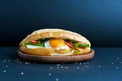 Vietnamese sandwich Royalty-vrije Stock Afbeeldingen